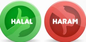 Forex stock Trading Halal or Haram
