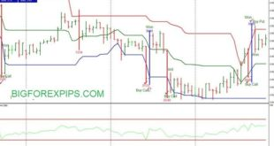 Support Resistance in forex