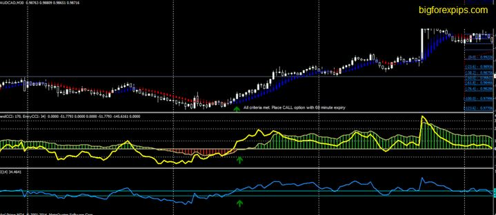 Trend Momentum forex strategy
