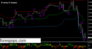 Binary options trading system software