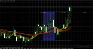 download forex profit trading