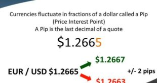 What is a pip