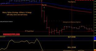 William's Percent Range with Buy Zone