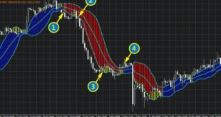 Forex Profit Boost Review