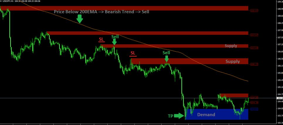 Forex supply and demand indicator real estate investment company business plan start up