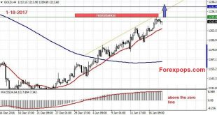 XAUUSD Strength Indicator MT4
