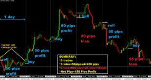 Hedge and Hold Forex Strategy