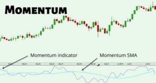 Momentum Indicator Strategy PDF