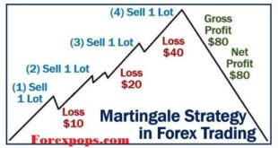 Martingale Trading Strategy
